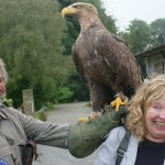 There's a big eagle on your shoulder.