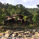 Photo of Back to Nature Ecotourism Guesthouse & Restaurant