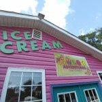 You scream, I scream, we all scream for Ice Cream