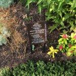 Foto di Cleveland Botanical Garden