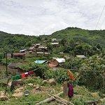 Photo of Forest Retreat Laos (Eco Tourism Specialist)