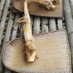 Traditional weaved trays holding herbal roots called Tongkat Ali.