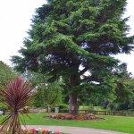 Lovely gardens