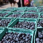Hand-picked Wild Maine Blueberries from the Farmer's Market