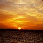 ภาพถ่ายของ Aruba Surfside Marina
