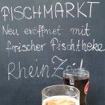Rheinzeit Foto