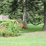 Hamac au jardin