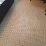 Carpet debris