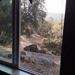 Yosemite Nights Bed & Breakfast Foto