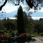 Pie' d'Ulivo Country House Photo