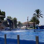 Photo de Marineland Majorca
