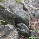 Appalachian National Scenic Trail Foto