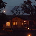 Exquisite setting, night or day, Rivertrees is a gem in Arusha.