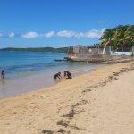 Photo of Seven Seas Beach