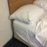 Photo de Shilo Inn Suites Hotel - Tillamook