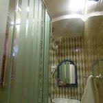 Cramped butterfly room bathroom