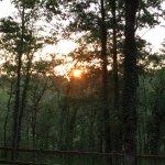 Photo de Camping La Palombiere
