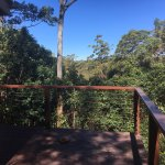 Foto de Kondalilla Eco Resort