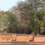 Photo of Nalanda