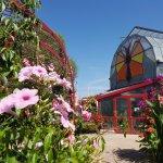 A l'intérieur ou à l'extérieur, découvrez le monde des papillons entourés de très belle plantes.