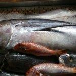 Fresh fish at Bacchus