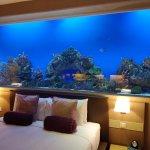 Aqua Supreme Room