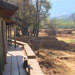 Askari Game Lodge & Spa Foto