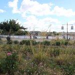 Photo of Jardin Public