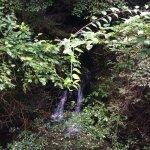 6号コースの滝😄