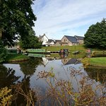 View of Ty Newydd B&B from the canal