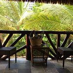 Beach Front Cabanas amongst the Palms