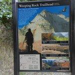 trainlhead for weeping rocks