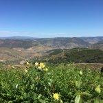 Mira o Douro