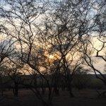 Sunset at Ranthambore National Park
