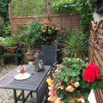 Guests Garden Area