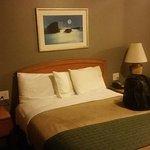 Rodeway Inn & Suites Near the Coliseum & Arena Foto