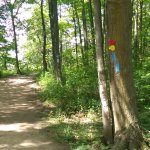 Shared markers with the Bruce Trail