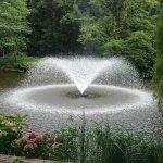 Photo of Wroclaw University Botanical Garden