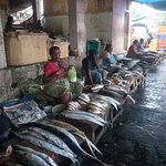 fish market in trivandrum