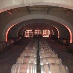 Photo de Provence Wine Tours
