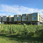 Loisium Wine & Spa Resort Langenlois Foto