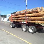 Lumber txruck make some noise on frequent trips