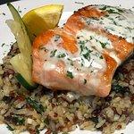 Fresh Salmon Feature