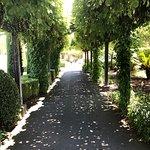 Photo de Napa & Sonoma Valley Wine Tour