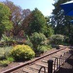 The abandoned railroad tracks