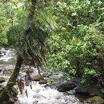 Photo of Eco - Hospedaje Ranchitos del Quetzal