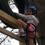 pine climb