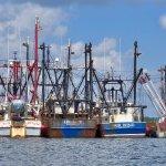 Trawlers - Fairhaven (New Bedford Harbor)