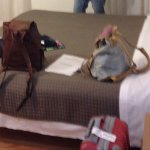 Photo de Hotel Gronda Lagunare