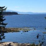 Photo de Sea Breeze Lodge